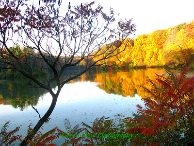 Autumn Durand Lake