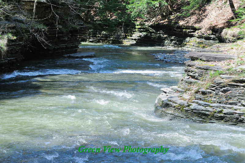 Stony Brook - The Babbling Brook